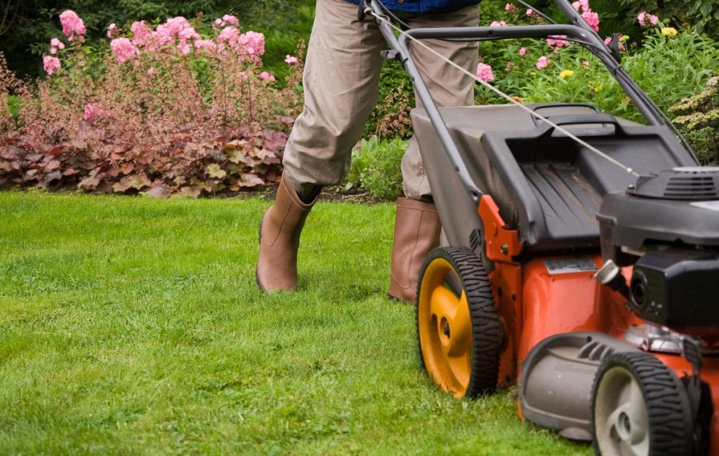 gardener mowing the lawn